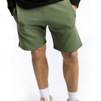 Regular fit | Shorts | Grön